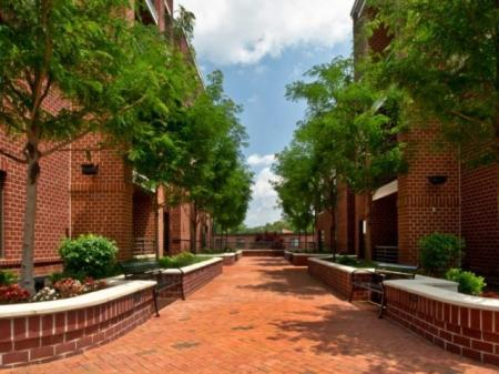 Alexandria VA Luxury Apartments | Del Ray Central 2