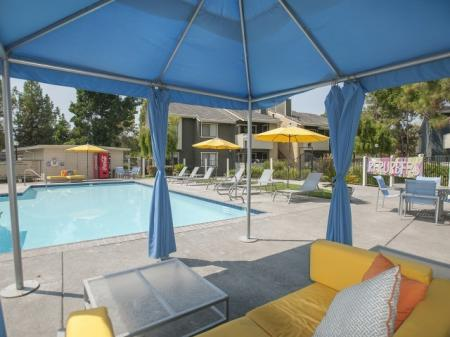 Residents Playing in the Pool | Apartment In Davis | The Edge