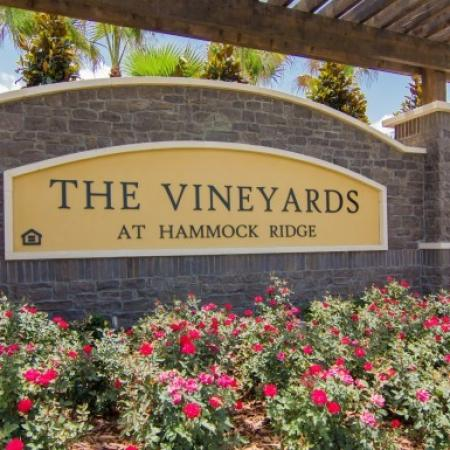 Apartments For Rent In Orlando | The Vineyards at Hammock Ridge 3