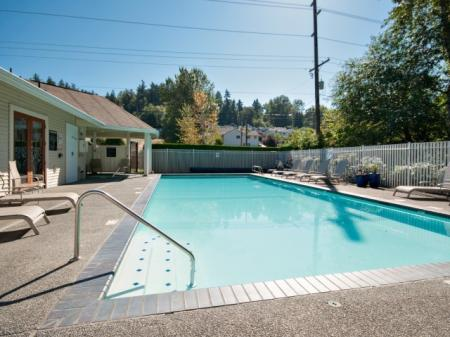 Sparkling Pool | Renton Apartment | Springbrook Apartments