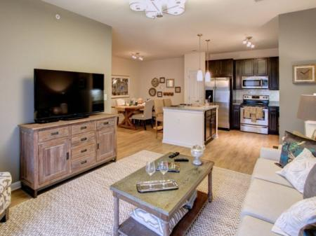 Spacious Living Room | Luxury Apartments In Charlotte NC | Alexander Village