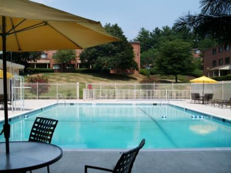 Residents Lounging by the Pool | Apartment In Silver Spring MD | Rollingwood
