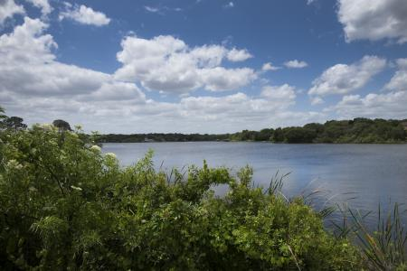 Ocean View | Apartment For Rent Altamonte Springs FL | Lakeshore at Altamonte Springs