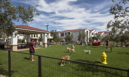 Chandler Apartments For Rent | Almeria at Ocotillo