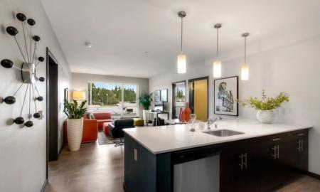 Modern Kitchen | Bellevue Washington Apartments | LIV