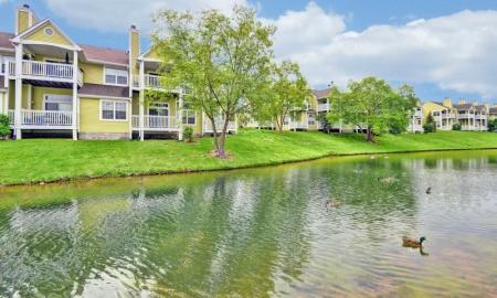 Pet Friendly Apartments Indianapolis | Island Club