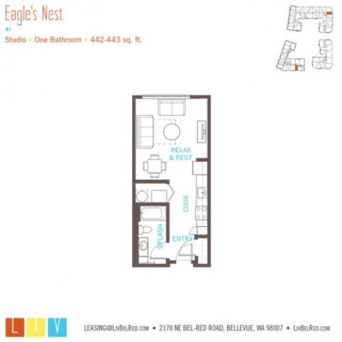 Studio Floor Plan | Bellevue WA Apartments | LIV