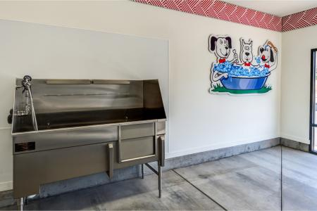 Community Dog Wash | Apartment Homes In Chandler | The Cooper 202