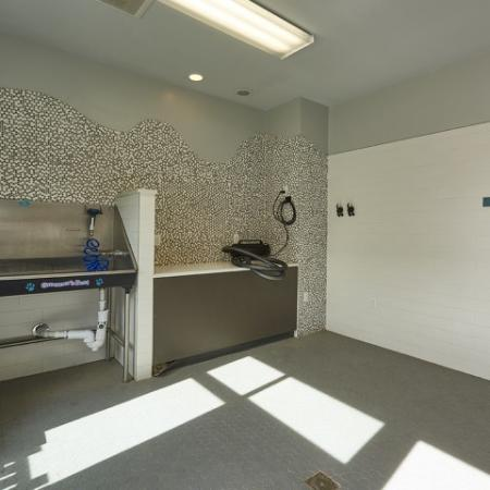 Pet-Friendly Apartments | Apartments In Thornton | Parkhouse