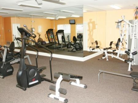 Premium Exercise Equipment