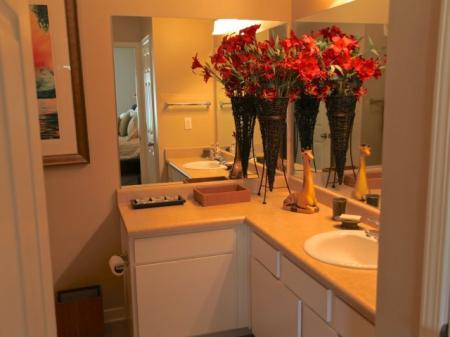 Bathrooms With Plenty of Counter Space