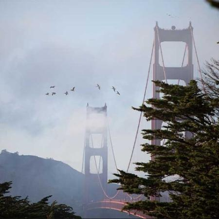 National Park | The Presidio Landmark