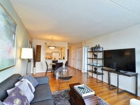 Apartments for rent in Arlington Virginia | Living Room