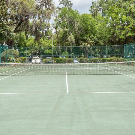 Tennis court with trees in background.
