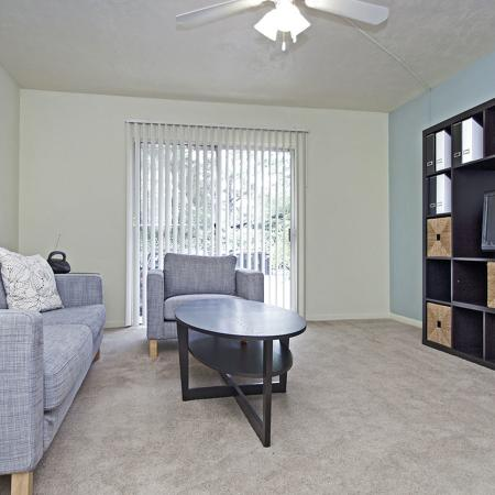 Carpeted living room with couch, coffee table and large entertainment stand with multiple shelves.