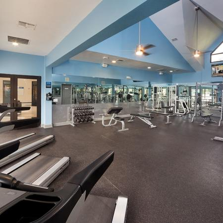 Community gym with treadmills and weights.