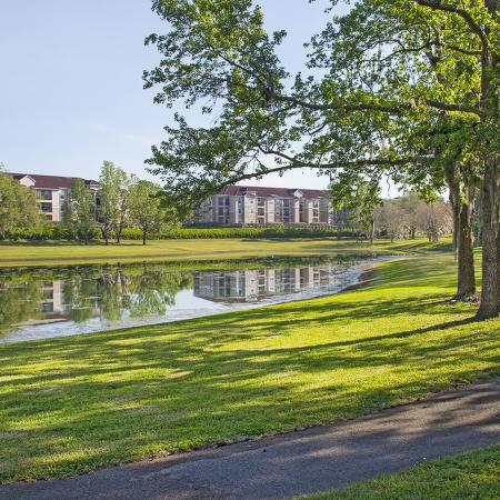 Paved walkway in a green setting. Trees and pond in background.