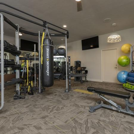 Carpeted gym with punching bag, medicine balls, weights, pull up bars, and various other pieces of equipment in the background.