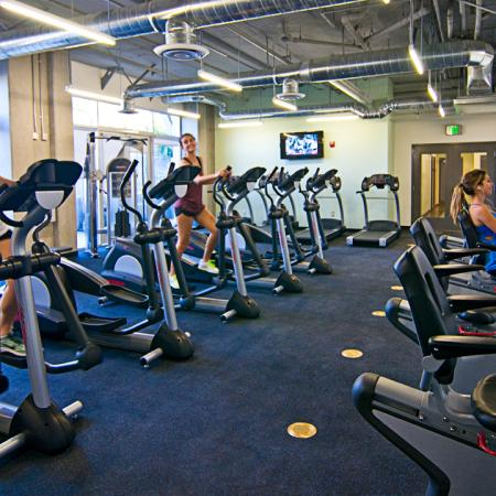 Fitness Center, Weight Machines, Cardio equipment