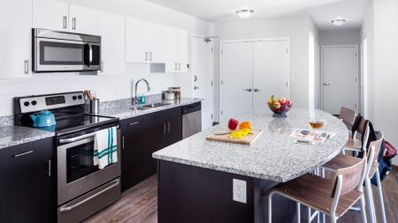 Kitchens with stainless steel appliances and utilities and finishes, apartments, Microwave
