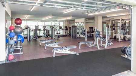 Work Out Center, Fitness Center, Weight Machines, Free weights, elliptical, treadmill, yoga, tanning, sauna