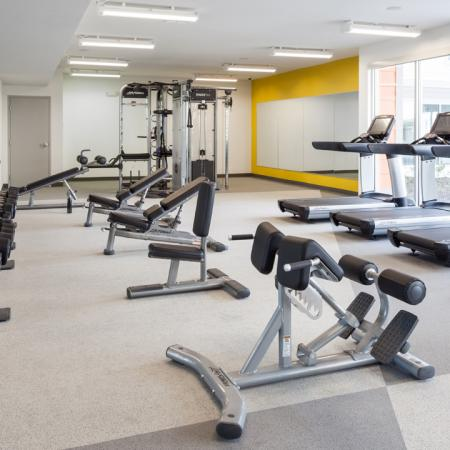 Work Out Center, Fitness Center, Weight Machines, Free weights