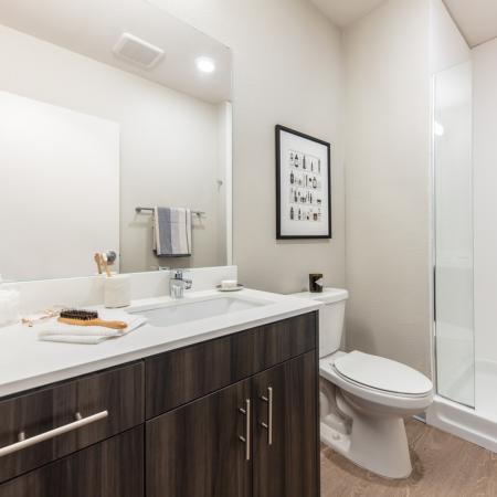 bathroom, apartment, off campus housing
