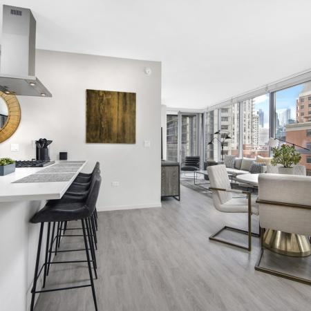kitchen, living room, three-bedroom apartment, luxury apartment, river north, chicago