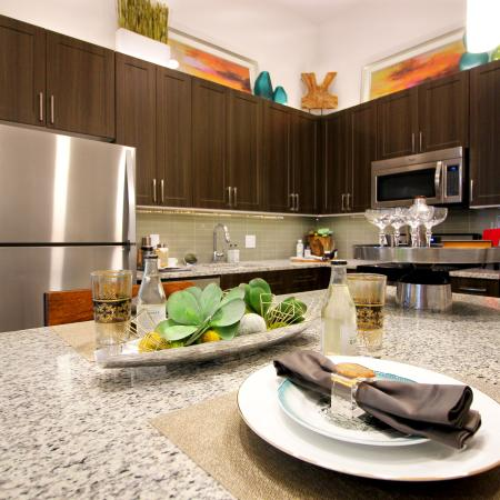 Modern Dallas Apartments | State-of-the-Art Kitchen (B2 Floorplan) Beautiful apartments in Dallas Texas.