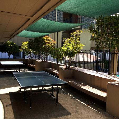 Resident Ping Pong Table   University Court