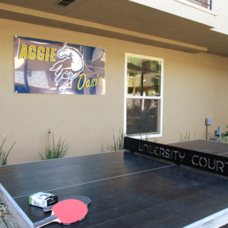 Community Ping Pong Table | University Court