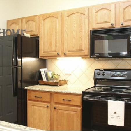 Sleek Black Kitchen Appliances
