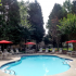 Sparkling pool, chair lounges & tables, Shade trees.