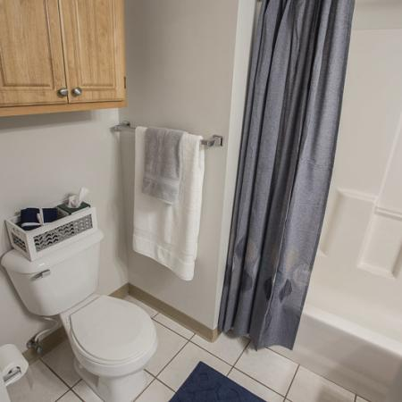 Ornate Bathroom | Apartments For Rent In Williamsville Ny | Renaissance Place Apartments