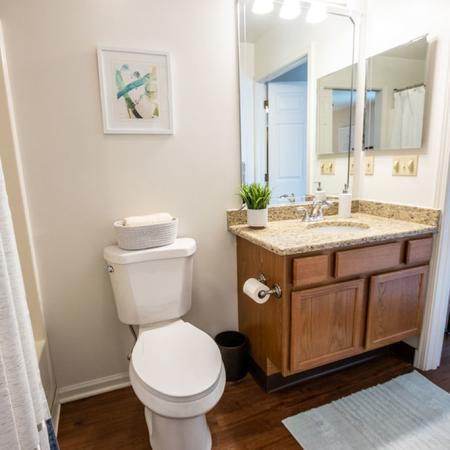 Ornate Bathroom | Apartments in Buffalo | Windsong Place Apartments