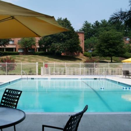 Residents Lounging by the Pool   Apartment In Silver Spring MD   Rollingwood