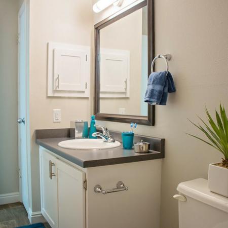 Riverbend Luxury Bathroom