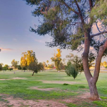 Community Park | Apartment in Scottsdale, AZ | Chazal Scottsdale