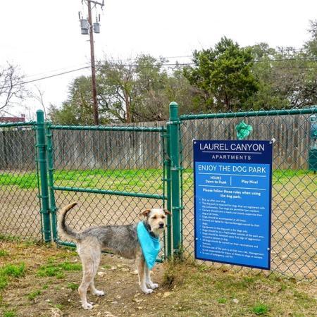 Community Bark Park | Apartment in San Antonio, TX | Laurel Canyon Apartments