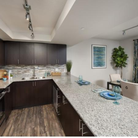 Large kitchens with spacious counters and designer backsplash