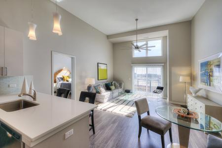 Luxurious Living Area | Apartments in Lombard | Apex 41
