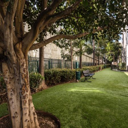 Resident Pet Park | Apartment In Santa Monica | AO Santa Monica