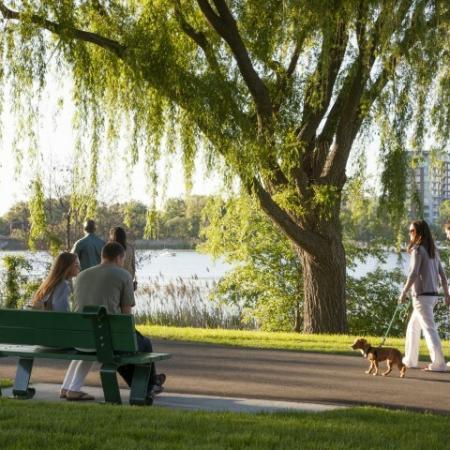 Scenic View | Somerville Luxury Apartments | Montaje