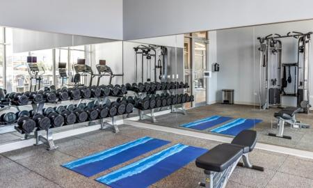 On-site Fitness Center | Lombard Apartments | Apex 41