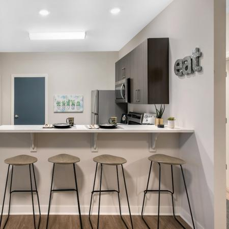 Elegant Kitchen | Purdue Student Apartments | Aspire at Discovery Park