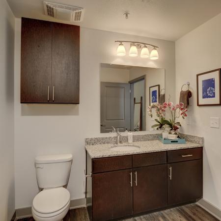 Ornate Bathroom | Apartments in Richardson | Northside