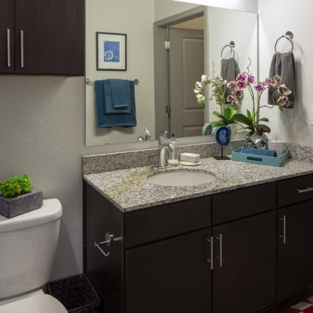 Elegant Bathroom | Apartments in Richardson | Northside