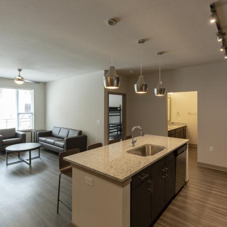 Spacious open floor plan | University Of Texas At Dallas Apartments | Northside