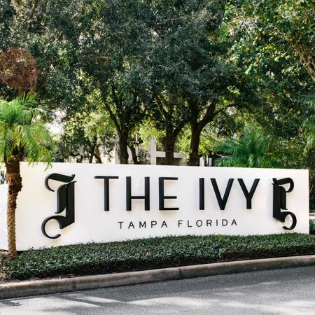 1800 The Ivy, exterior, property sign, Tampa Florida, trees, palm trees, landscaping, driveway
