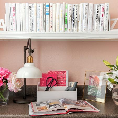 1810 The Social, interior, counter, shelf, pink wall, books, flowers, lamp, book, picture